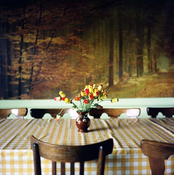 photographie, couleurs, intérieur, bouquet de roses sur une table